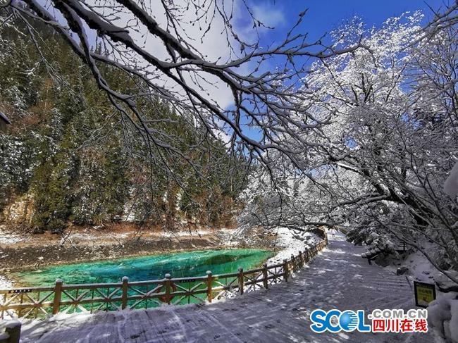 """视频丨春雪下的""""九寨之眼"""",美得像童话"""