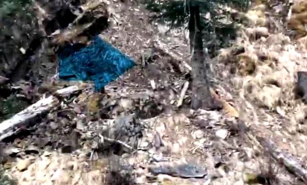 视频丨理塘县发现疑似雪豹活动,见到车辆后迅速越过河