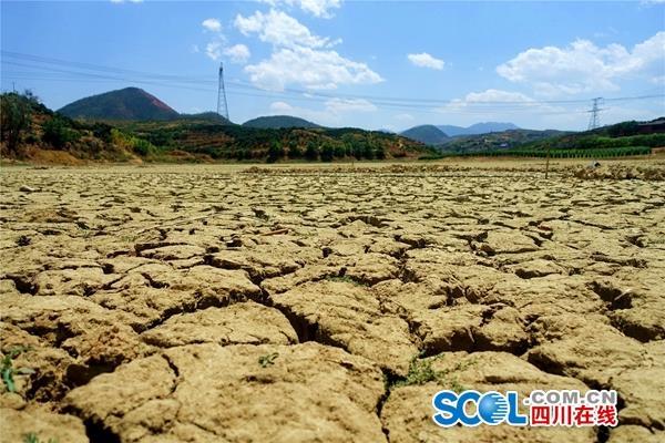 """攀枝花市仁和区:大""""烤""""来袭,如何度过""""水危机""""?"""